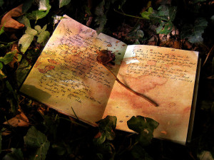 Profit_In_Your_Poetry_by_woodfaery